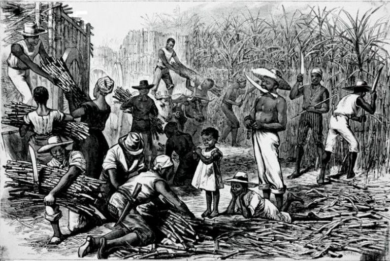 an analysis of slavery in world Studied and argued over slavery's association with new world capitalism studies of the transatlantic slave trade, of the relationship between the modern world and slavery, and of the.