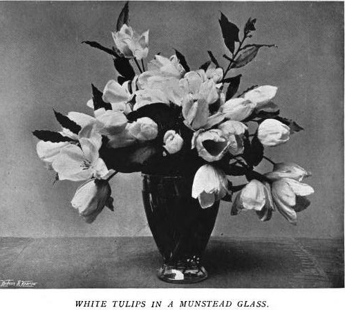 White Tulips in Munstead Glass